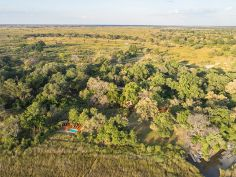 Camp Moremi, Moremi Game Reserve