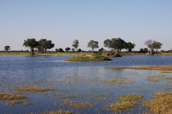 Botswana Wildnis Self Drive