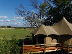 Nambwa Tented Lodge, Suite
