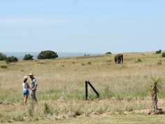Amakhala Private Game Reserve - Bush Walk