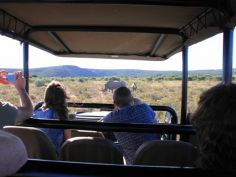 Amakhala Private Game Reserve - Game Drive