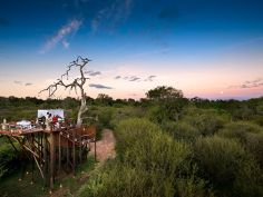 Lion Sands Private Game Reserve, Chalkley Tree House
