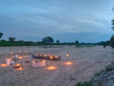 Ngala Private Game Reserve - Bush Dinner