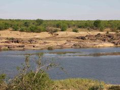 The Best of South Africa - Unterwegs im Kruger National Park