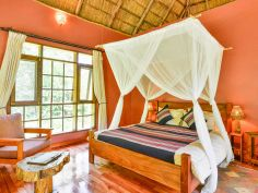 Primate Lodge - Beispiel Luxury Cottage