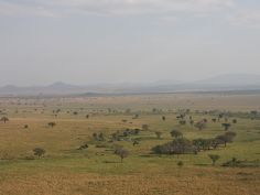 Kidepo Valley National Park - endlose Weite