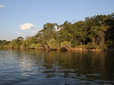 Classic Zambia - Kafue National Park