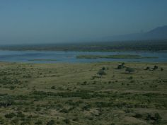 Zimbabwe - Mana Pools
